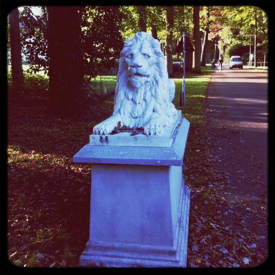 De leeuwen bij ONO. De oude residentie van Willem de Grote. Mycity MyWorld ♡ Geschiedenis Art