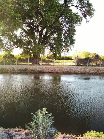 Bella la tierra de mi amigo!.. Paisaje Rural  Una Tarde Hemosa Miamigo  y su Celular!.. gracias Martin!.. Canales De Riego Valledelmayo ...