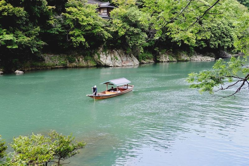 Man sailing boat in river against trees