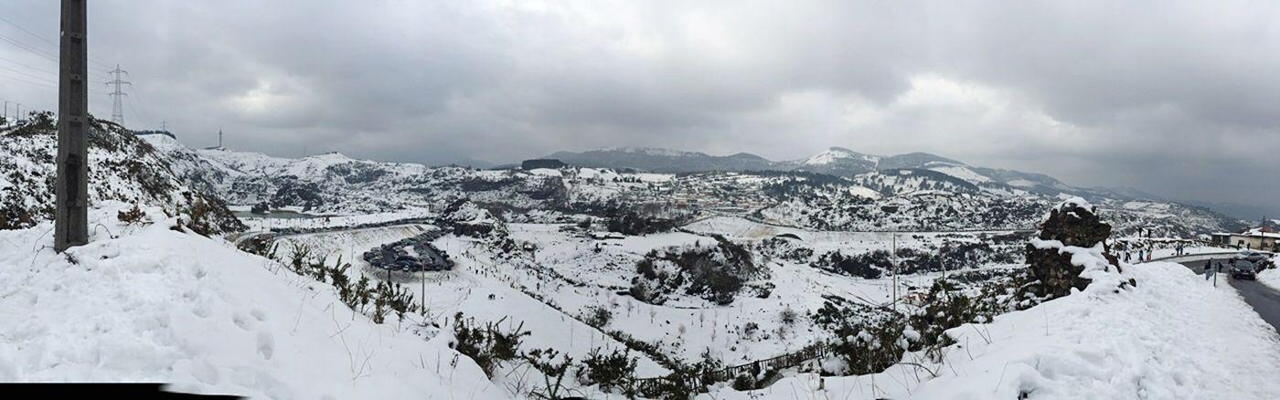La arboleda nevada