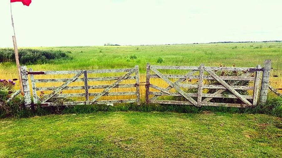 Gate Gates