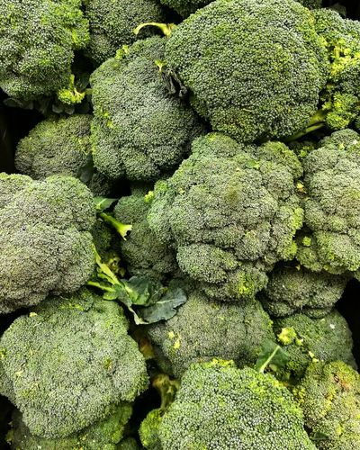 Brocolli Green Brocolli Vegetable Organic Food Healthy Food Healthy Eating Green Nature