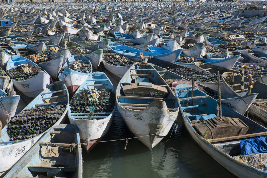 hundreds of traditional fishing boats waiting in Harbour of Nouadhibou Harbour Fishing Industry Traditional Fishing Boats Economy Food Environment Vessel Boats Close-up Africa North Africa Mauritanie Water Nautical Vessel Transportation Moored Mode Of Transportation Day High Angle View Nature No People Abundance Outdoors Large Group Of Objects Sea Architecture Harbor Land Built Structure In A Row Beach Rowboat Port