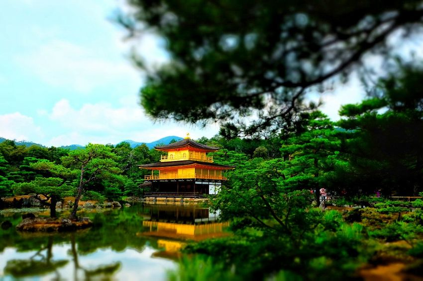 Japanese Architecture Japanese Traditional Built Structure Kyoto, Japan Japanese Style Japanese Temple Architecture Outdoors