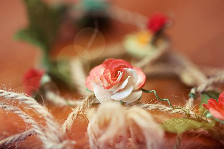 Close-up of roses decoration blur wooden background