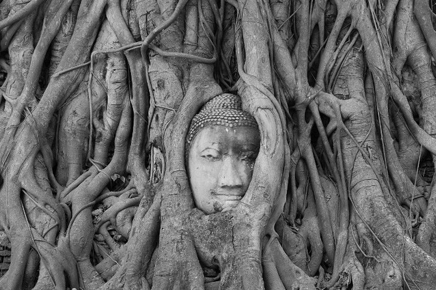 Thailand Bangkok Statue Human Representation Art And Craft Spirituality No People Outdoors