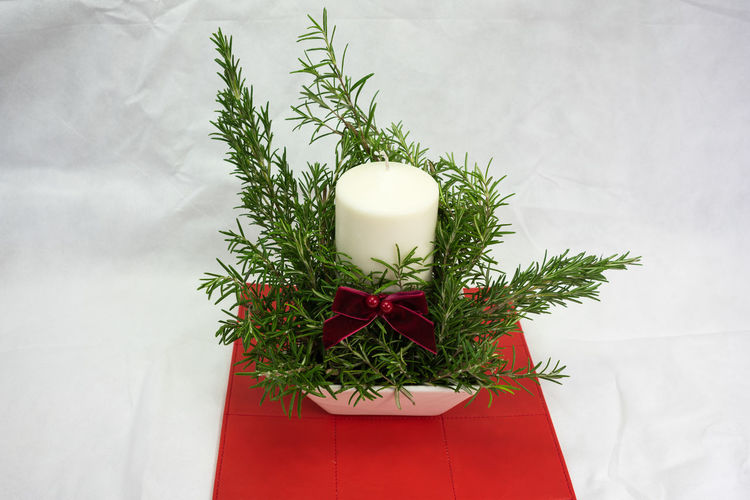 A candle display for xmas Candle Celebration Christmas Day Evergreen Gift Indoors  No People Red Bow Red Table Mat White Back Drop