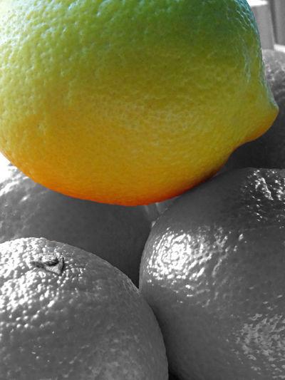Colored lemon on orange BnW fruits Lemon - Fruit Citrus Fruits On Orange Bnw Selectives Colors Large Lemon Big Lemon Yellow Green Orange Beautiful Fruit Full Lenght Group Of Fruits Fruit Yellow Close-up