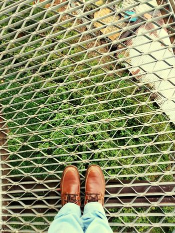 Shoe Shoes ♥ WoodLand EyeEm Best Shots Eye4photography  EyeEm Gallery EyeEmBestPics Eyemphotography EyeEm Eyeemphotography Awesome Beautiful Elegant Creativity CreativePhotographer Stairs Hillside Hilltop