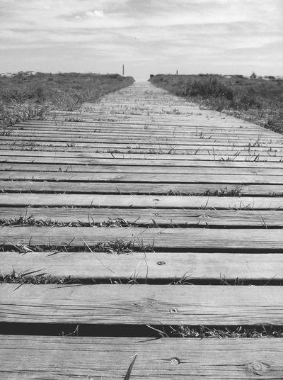 Boardwalk in field