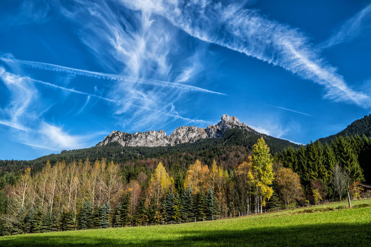 Säuling in autumn Cloud - Sky Sky Beauty In Nature Mountain Scenics - Nature Plant Vapor Trail Tranquil Scene No People Nature Non-urban Scene Tree Day Tranquility Landscape Land Blue Grass Environment Low Angle View Outdoors Autumn Tyrol Austria Alps