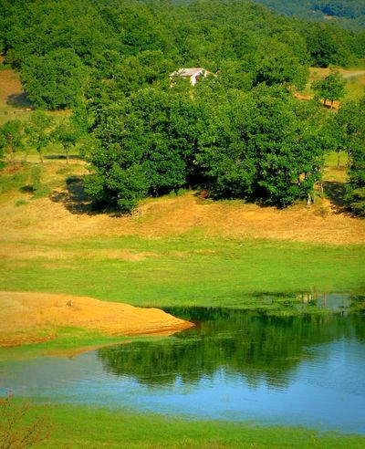 Landscapes With WhiteWall Lake Lake View Mountain Mountain View Mountain And Lake Forest Forest And Lake Greenery Nature Beauty In Nature Water Reflections Reflected Glory Reflection Beautiful Nature Shades Of Blue Nature_collection House A Moment Of Zen... Tranquil Scene Tranquility Trees Trees And Lake Plastira Lake Karditsa