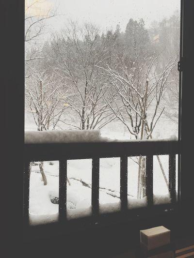おはようございます。朝は雪が降っています おはよう