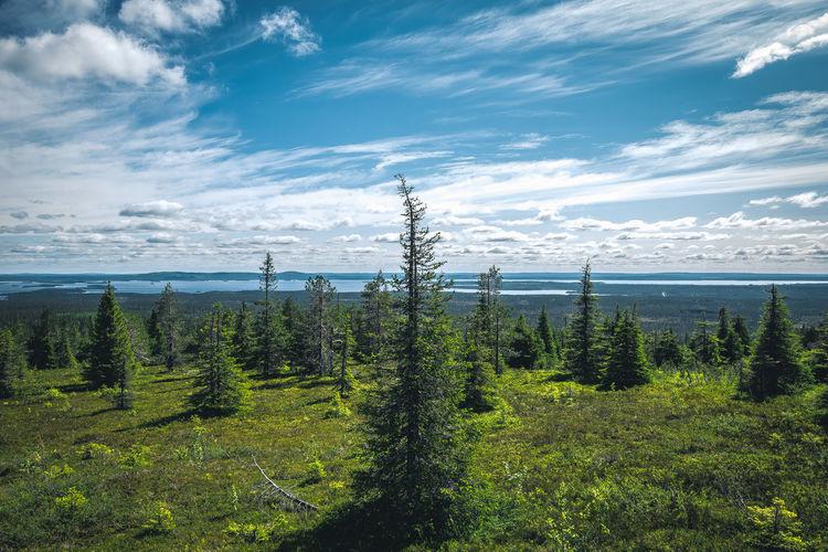 Photo taken in Posio, Finland