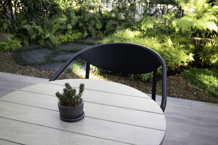Close-up of potted plant on table in park