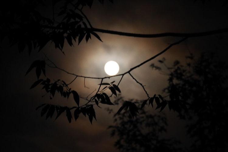 Micro Moon Sky
