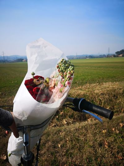 Flower bouquete