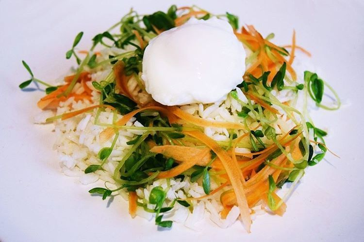 Clean Eating Egg Food Healthy Healthy Eating Meal Plate Ready-to-eat Served Sprouts