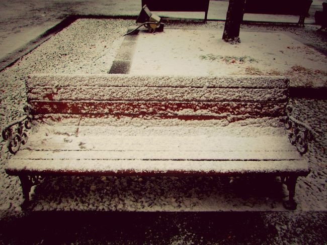 Snow :) Winter Snowing