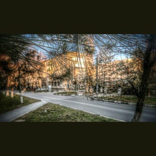 Азов фокус Дорога улица трава здания размытие иголки ель деревья небо вечер snapseed Azov focus road street buildings blur trees sky evening hdr fall autumn grass