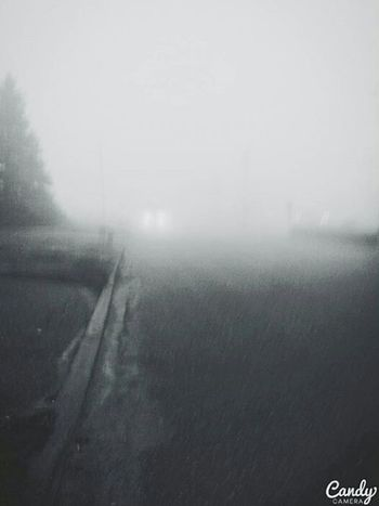 Mist Misty Misty Morning Misty Mornings Misty Landscape Mistyfoggymilkymoody Fog Foggy Foggy Morning Foggy Day Foggy Weather Foggy Landscape Blackandwhitephotography Black And White Photography Black And White Collection  Blackandwhite Black&white Blackandwhitephoto Blackandwhite Photography Blacknwhite Black & White Road