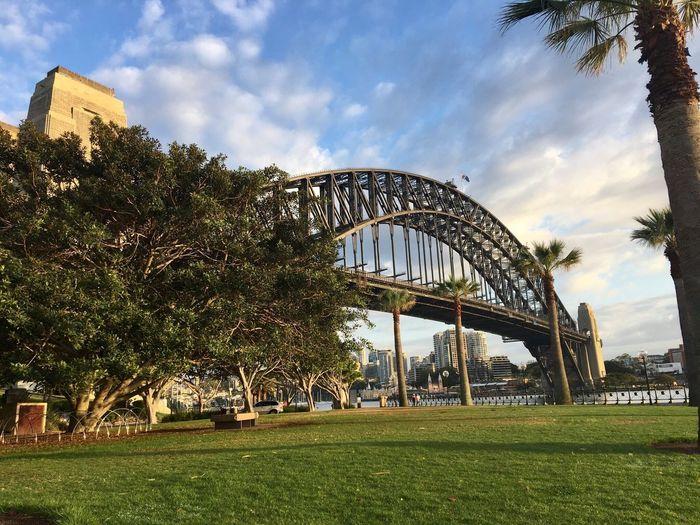 Sydney harbour bridge First Eyeem Photo