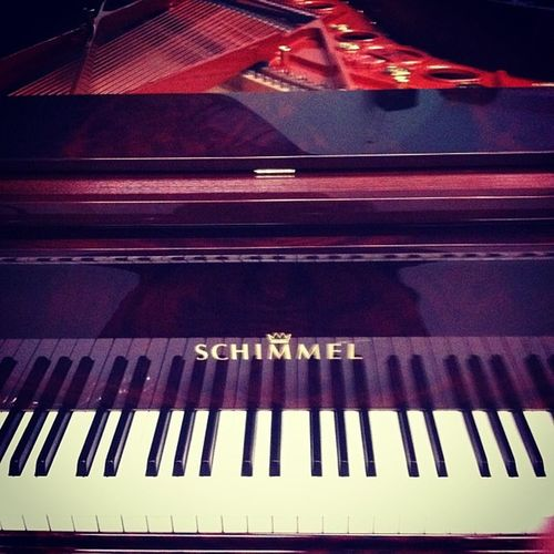Piano Schimmel Grand Klavier flügel music musik pianist