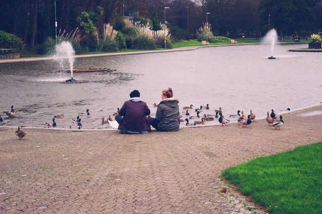 Couple Relaxing Ducks Birds Water Sky People Taking Photos Eye4photography  From My Point Of View Winter 2015 Showcase: December