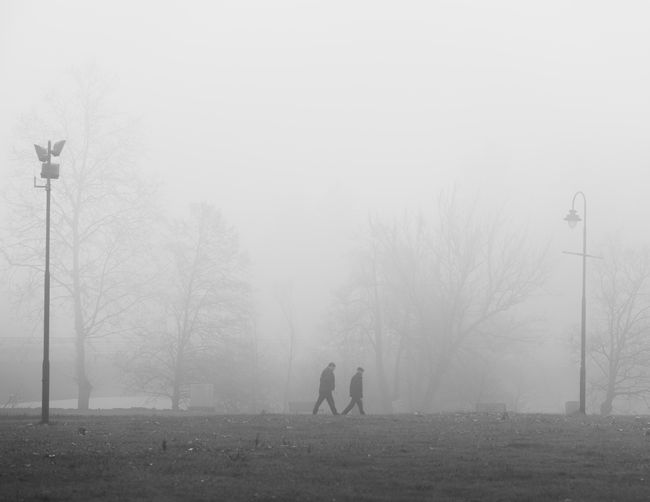 People on field against sky during foggy weather