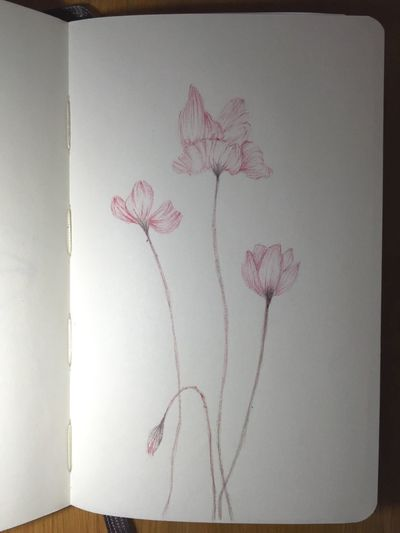 Abstract Art Vintage ArtWork Illustration Art Gallery Draw Art, Drawing, Creativity Abstract Art Drawings Flowers Summer Ink Sketching Sketch Moleskine Pen Drawing Trees Drawing Painting Grunge Paint Tattoo Tattoos Tattoomodels