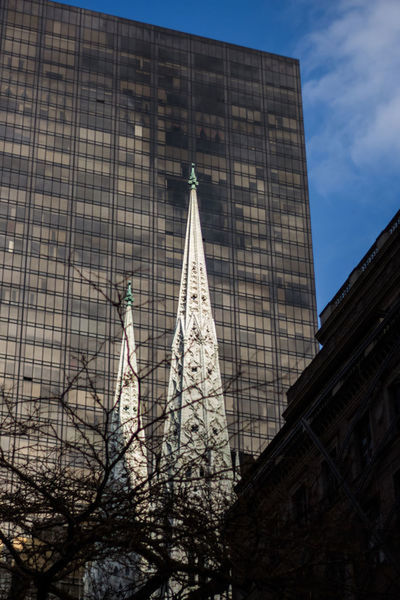 New York St Patrick's Cathedral Spire  Cathedral Architecture Built Structure Building Exterior Building Low Angle View Tower No People Sky Nature City Day Travel Destinations Tall - High Office Building Exterior Tree Tourism Outdoors Modern Office Skyscraper Spire