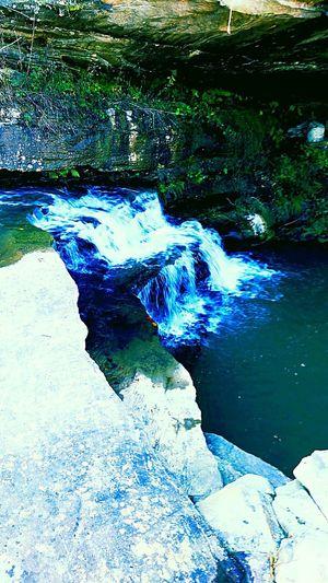 Cave Water Close-up Algae