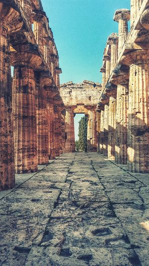 Architecture Outdoors No People The Way Forward Columns Sunshine Shadow Day Greekstyle Temples Poseidon, Peastum in Italy