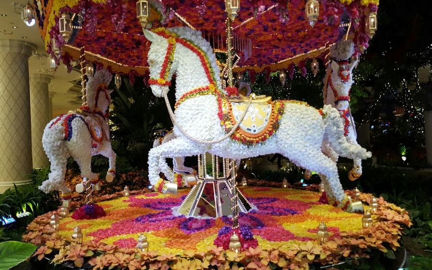 Decoration With Flowers Horse Multi Colored Vibrant , Carousel Decorative Art Display Whimsical Animal Themes No People Pretty Artistic