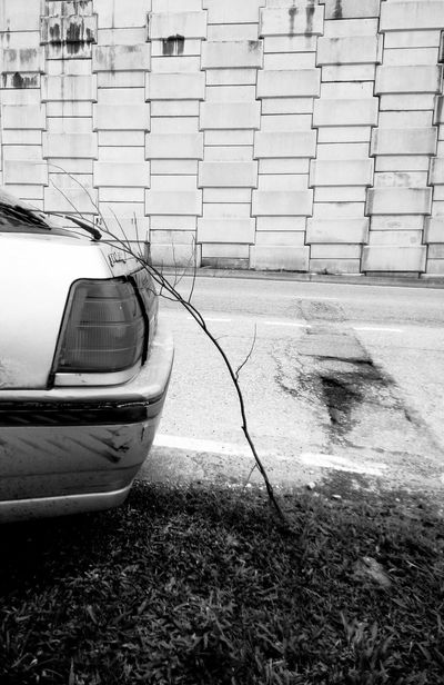 Stalled by roadside Transportation No People Stalled Vehicles Need Repairs Stock Image Outdoors Dead Branch Blackandwhite Not Moving