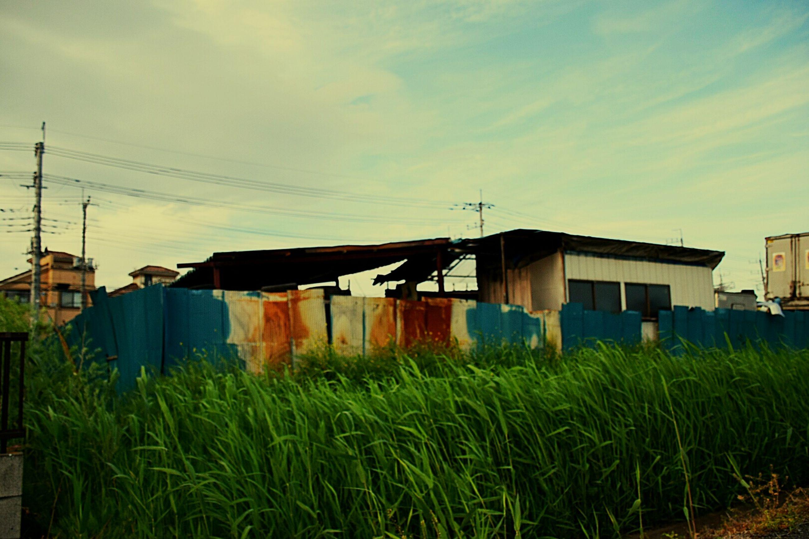 building exterior, built structure, sky, architecture, field, grass, house, rural scene, power line, farm, electricity pylon, agriculture, growth, cloud - sky, plant, green color, cloud, nature, no people, cable