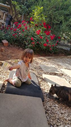 Little Child And Cat Child Outdoors Pets