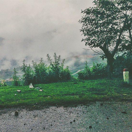 HTC Nature_lovers Misty Foggy VSCO Vscooftheday Adayinthailand