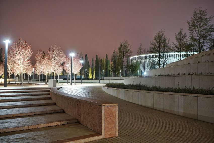 Night Tree Outdoors Sky Illuminated No People Stadium HUAWEI Photo Award: After Dark
