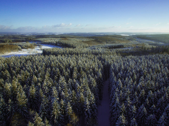 Over the Forest Beauty In Nature Cold Temperature Day Drone  Drone Photography Dronephotography Field Forest Forest Photography Growth Landscape Landscape_Collection Landscapes Nature Nature Nature_collection No People Outdoors Scenics Sky Snow Tranquil Scene Tranquility Tree The Great Outdoors - 2017 EyeEm Awards