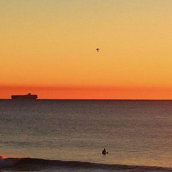 Calm orange sunrise skyline over the ocean. Sunrise Beach Skyline Sea Nature Horizon Over Water Beauty In Nature Scenics Water Sun Sky Blue Ocean Calm Tranquil Peaceful Waves Ocean Ocean View Sunrise And Clouds Morning orange Sunlight Ocean horizon