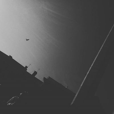 deja vu | Morningsun _____________ Bnw_city Bnw Bw Insta_bw Insta_noir Monochromatic Destination_noir Bnw_photografare Bnw_society Bnw_umbria Bnw_universe Bnw_of_our_world Rsa_bnw Bnw_cluj Bnw_globe_ Bw_wednesday Bw_perfect Bnw_captures Bnw_mycitylife Bnw_rose Bnw_planet Bnw_captures Bnw_umbria Insta_bw insta_noir bnw_empire bnw_society bnw_europe streetsofcluj cj05bnw instacluj world_bnw viataincluj cluj