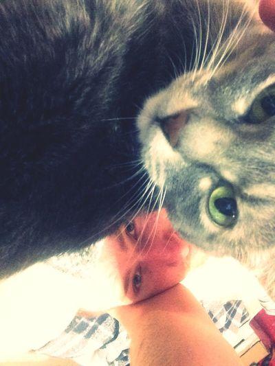 С котом Catsagram First Eyeem Photo