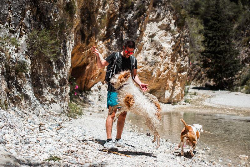 Full length of dog on rock