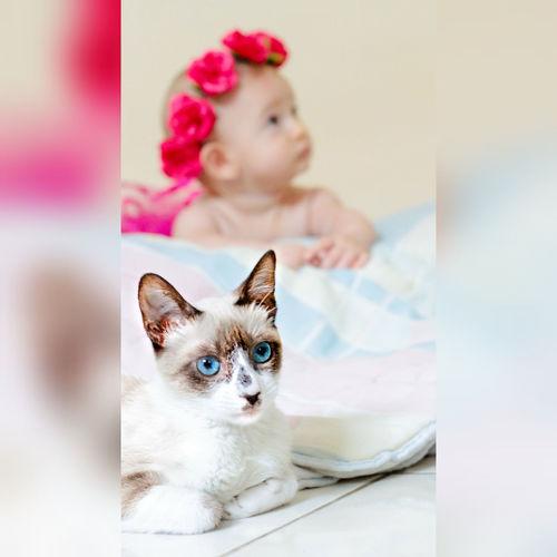 cat baby girl