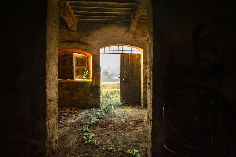 Autumn colors Ways Of Seeing Light And Shadow Architecture Built Structure Window No People Abandoned Day Old Building Exterior Outdoors Wall - Building Feature Damaged Entrance Nature