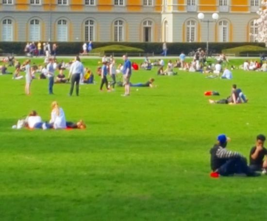 Large Group Of People Grass Group Of People Green Color Sitting People Spectator Building Exterior Team Sport Men Day Sport Adults Only Soccer Field Watching Outdoors Architecture Sports Team American Football Field Teamwork