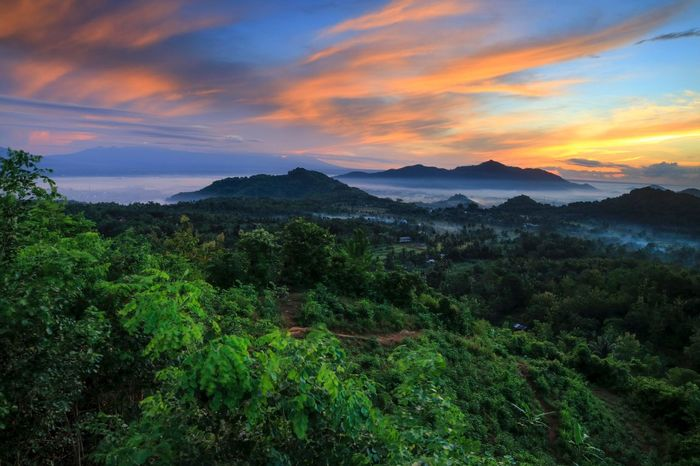 Beautiful sunrise with the nature Green Color Landscape_photography Landscape_Collection Landscape Nature Photography Sunrise Mountain Nature
