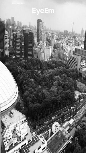 東京 Tokyo,Japan Black And White STRANGE ASPECTS Tokyo Dome