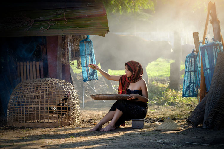 Young Woman Feeding Chicken In Wicker Basket At Farm